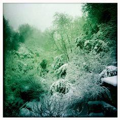 Snowed In. #Lebanon #Bickfaya