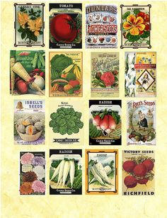 vintage seed packet collage