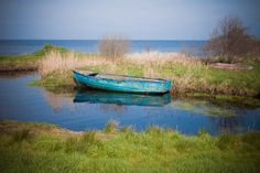 Derrytrasna, Lough Neagh. Submitted by Barry McQueen