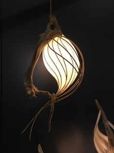 Cameron Mathieson makes organic lighting using driftwood, tree roots and shades made of Japanese paper and resin.
