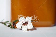 Manuka Honey and Flower Royalty Free Stock Photo