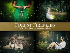 Forest Fireflies photo overlays from Brown Leopard. Only $15.