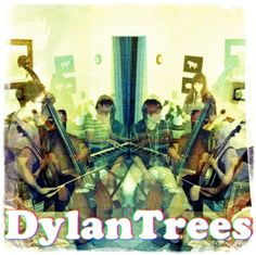 dylantrees.com