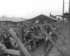 Photo showing internment of ethnic Japanese in America following Presidential Executive Order 9066 (signed and issued by FDR in 1942).  Around 120,000 ethnic Japanese were held in internment camps for the duration of the war. 62% were American born citizens.  As part of the order 11,000 people of German ancestery were also interned including Jewish refugees.