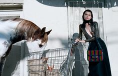 Set in Los Angeles, the Gucci Spring Summer 2020 campaign stars horses and their human friends in paradoxical scenarios. Of Course a Horse is conceived by Alessandro Michele, art directed by Christopher Simmonds and directed by Yorgos Lanthimos. Gucci Campaign, Campaign Fashion, Photography Pics, Summer Photography, Fashion Photography, Clothing Photography, Wildlife Photography, Lifestyle Photography, David Sims