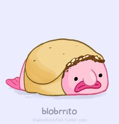 blobfish - Google Search