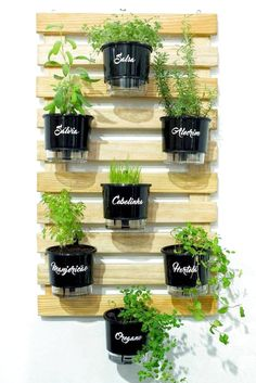 indoor garden With the increase in organic gardening many have been planting their own fruits and veggies. Here are some herb garden planter ideas that you can do yourself. Herb Garden Design, Garden Types, Garden Design Ideas, Garden Inspiration, Design Jardin, Herbs Indoors, Vertical Gardens, Small Gardens, Garden Planters