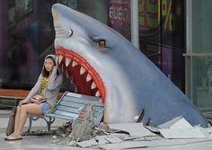 Shark Bench in Bangkok, Thailand