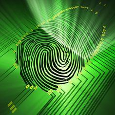 Fingerprints tell all: Progress in fingerprint analysis - http://www.scoop.it/t/science-news/p/1517636071/fingerprints-tell-all-progress-in-fingerprint-analysis