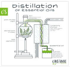 Alternative Health, Alternative Energy, Survival Prepping, Survival Skills, How To Make Moonshine, Graffiti Alphabet Styles, Apothecary Decor, Essential Oil Distiller, Homemade Alcohol