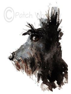 Scottish Terrier Dog , printed on Fine quality paper, 300gsm Printed with UltraChrome K3 pigment ink. 8 X 6 Inches Initialed on the front,Signed and dated on the back. Mailed in a hard backed envelope with a protective sleeve. Please note colours may vary from your monitor.