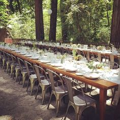 Dinner in the redwoods last night with for Snapchat, Reception, Table Decorations, Dinner, Wedding, Instagram, Night, Home Decor, Dining