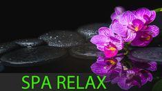 8 HOURS Best Relaxing Music: Spa Music, Massage, Zen, Healing Music, Yog...