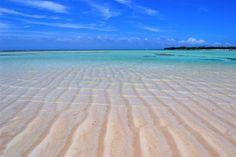 秘境のイメージが強い奄美大島ですが、今ではLCCで気軽に訪れることができる極上リゾートなんです。ゴールデンウィークや夏休みに行きたい奄美大島の魅力をご紹介します。