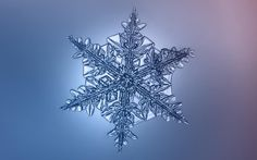 SNOW SHOW | Snowflakes like you've never seen them before | Photography by Alexey Kljatov | Sierra Magazine | #snowflakes #winter #microphotography