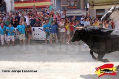 torodigital: 5ª Entrada de toros y caballos de Segorbe