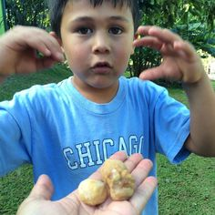 """Mom! I found Hawaiian candles!"" #kukuinut #nut #candle #oil #hawaii #hawaiian @papahana96744"