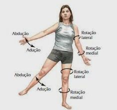 "ANATOMIA HUMANA - SISTEMA ARTICULAR O termo anatomia é derivado do grego antigo e significa ""seccionar"". A anatomia pode ser compre... Skeleton Muscles, Musculoskeletal System, School Motivation, Body Reference, Med School, Human Anatomy, Study Tips, Physical Education, Human Body"