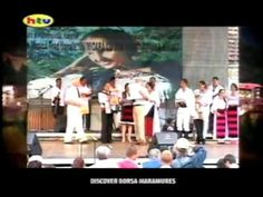 Maestrul Gavrilita Mihali Personalitate Culturala a Maramuresului - Memoriu de activitate