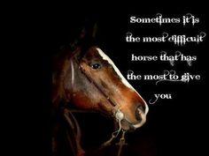 Cutting!western quarter paint horse appaloosa equine tack cowboy cowgirl rodeo ranch show ponypleasure barrel racing pole bending saddle bronc gymkhana