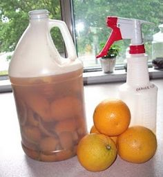 Orange peels and vinegar in a quart jar, let sit for 10 days or so...strain out the liquid and use as an all-purpose cleaner. Easy, cheap, natural, smells good!