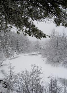 Padovanokite artimiausiems žmonėms žiemišką išvyką. Galite pasivaikščioti parke, miške arba nuvykti prie artimiausio ežero ir praleisti aktyviai laiką slidinėjant pačiūžomis.
