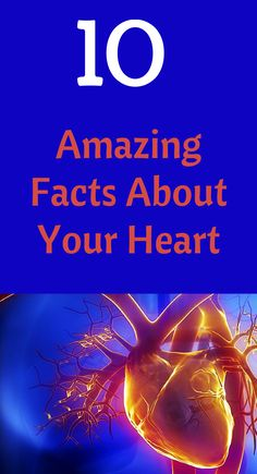 Amazing Facts About Your Heart:  7. Your activity level is the greatest potential risk factor for heart disease.