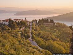 """Istria: The area has been called """"the new Tuscany"""" and it's not hard to see why. There are hilltop villages, such as Motovun (below), seaside towns and delicious Italian-ish food."""