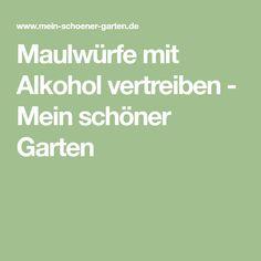 Maulwürfe mit Alkohol vertreiben - Mein schöner Garten