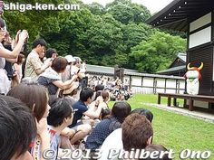 Hiko-nyan now appears every day at Hikone Castle | Shiga News - by Philbert Ono