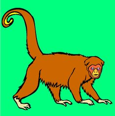 yellow tailed wooly monkey coloring page