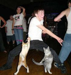 HAHAHAHAHHH! See people, teaching your pets to dance pays off! :-D