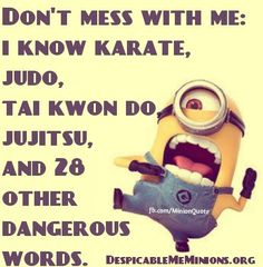 Don't mess with me. I know karate,judo,