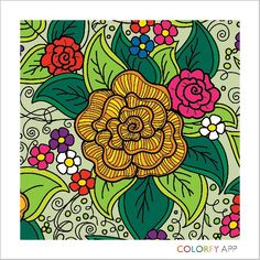 Flor cor de abóbora