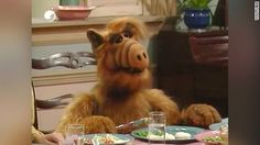 """'ALF' actor dies at age 76 - Michu Meszaros, the actor who played """"ALF"""" in the sitcom has died, according to his longtime friend and manager Dennis Varga. Michael Jackson, 1980s Tv Shows, Norman Bridwell, Cnn Breaking News, Bros, Thanks For The Memories, Famous Celebrities, Popular Music, Scooby Doo"""