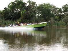 Altun Ha Mayan Site & River Wallace  Belize