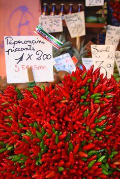 Fotografía: Isabel Cisneros Cisneros, Red, Venice Italy