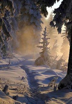 verschneite Idylle in Kanada