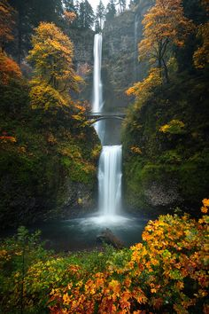 Beautiful fall colors on display at the iconic Multnomah Falls in the Columbia River Gorge [OC] [8001200] #reddit