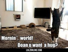 Mornin' World! Doan U Want A Hug?