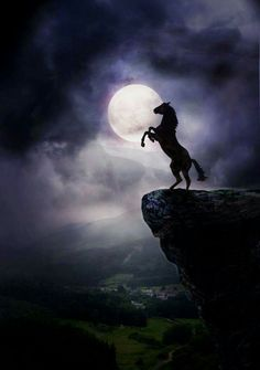By the power of the moon. Horse art, horse painting, horse rearing up on cliff . Cute Horses, Pretty Horses, Horse Love, Beautiful Creatures, Animals Beautiful, Animals And Pets, Cute Animals, Most Beautiful Horses, Majestic Horse