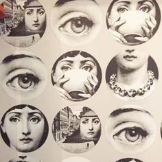 Pin By Shelley Stefan On Fornasetti