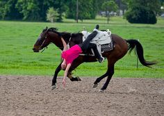 """Lindsay George Byers, trick """"The side back bend"""". Horse Barns, Horse Tack, English Horses, Trick Riding, Dream Stables, Horse Galloping, Ranch Life, Show Jumping, Horse Love"""