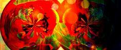 Pomegranate by lgwildwomanofthenort.deviantart.com on @DeviantArt