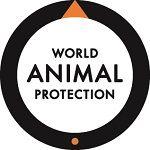 Factory Farmed Animals - World Animal Protection