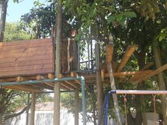 Treehouse incomplete ....construction on the treehouse balcony
