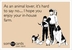 As an animal lover, it's hard to say no..... I hope you enjoy your in-house farm.