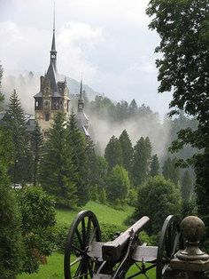 Peleș Castle (Castelul Peleș) is a Neo-Renaissance castle in the Carpathian Mountains, near Sinaia, in Prahova County, Romania, on an existing medieval route linking Transylvania and Wallachia, built between 1873 and 1914. Its inauguration was held in 1