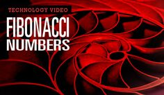 Cary, NC – The latest in ourS.T.E.M. video seriesconcerns Fibonacci Numbers, also known as the Golden Ratio. It is a sequence of numbers that influence mathematics, science, engineering, art and…
