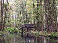 Reiseziele Oktober: Spreewald Urlaub mit Kind